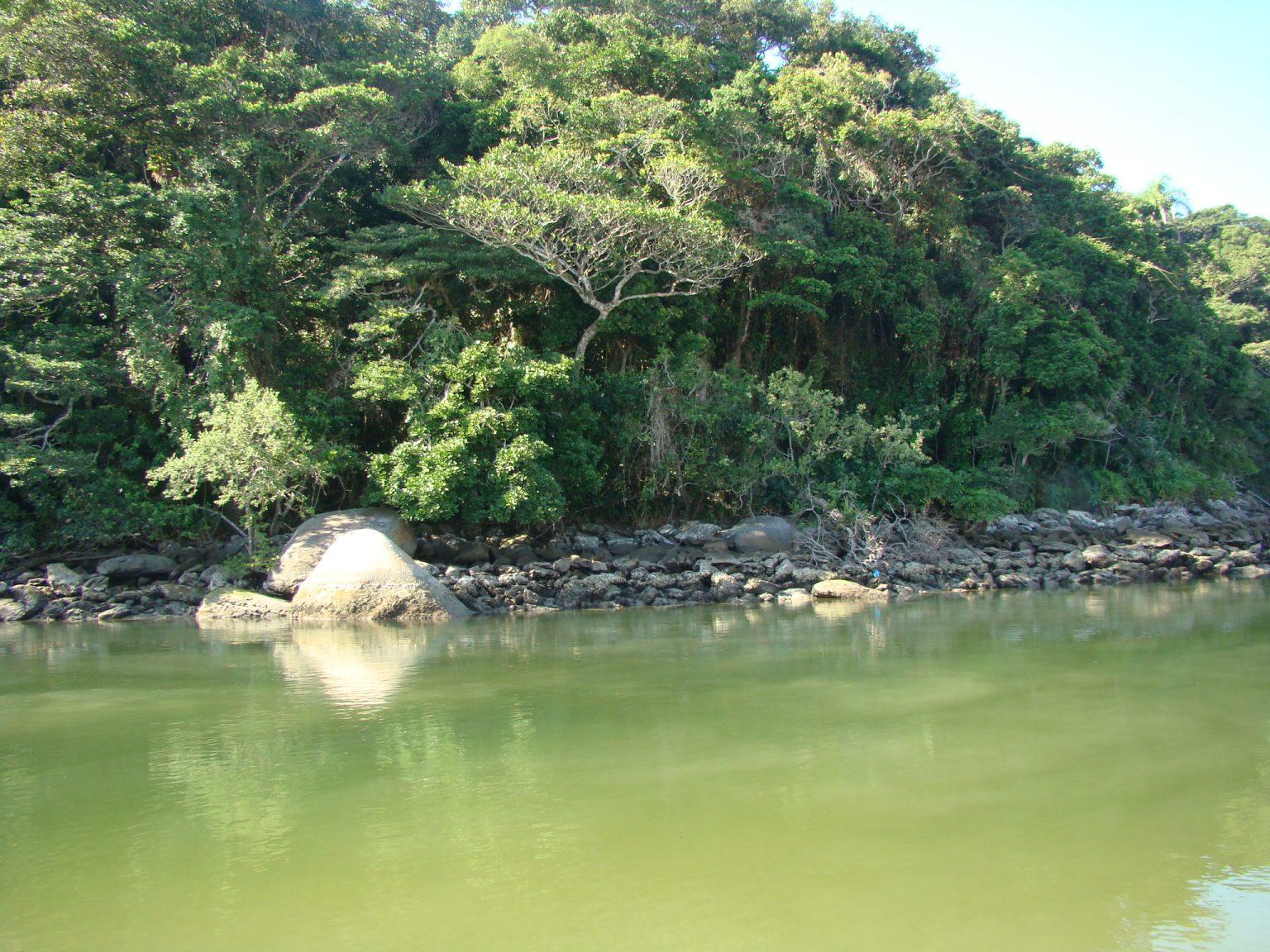 Rio Guaratuba